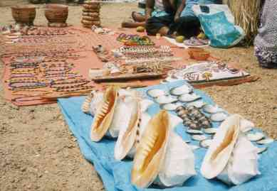Shells for Sale in POM